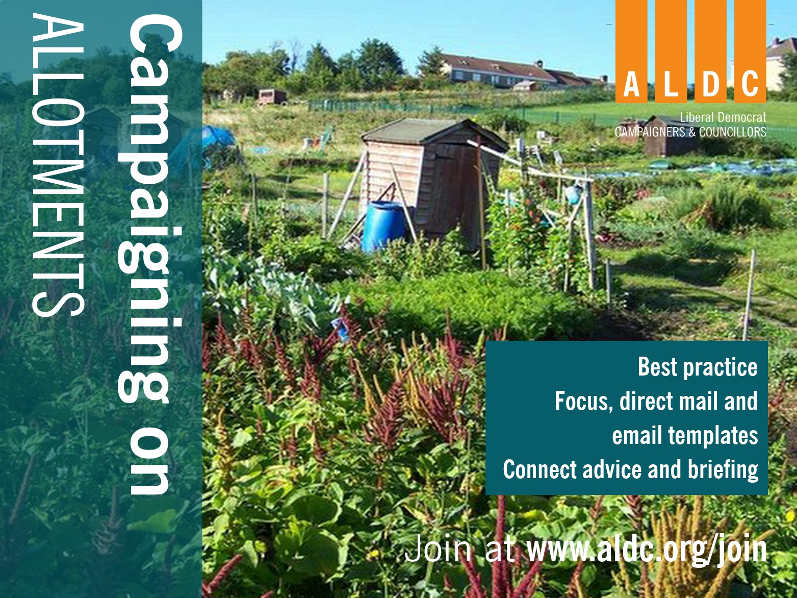 Campaigning on Allotments
