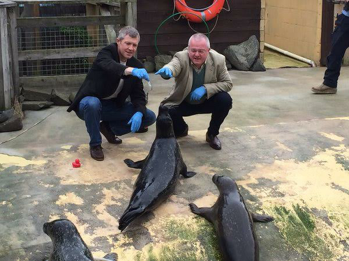 Volunteering and Something Fishy in North East Fife