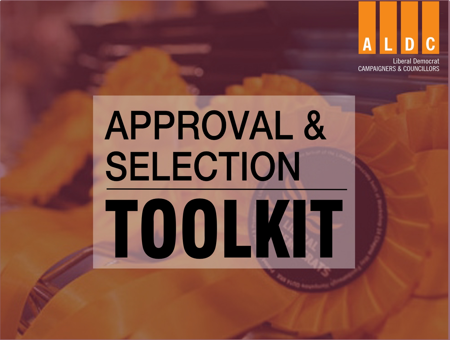 Toolkit: Approval and Selection