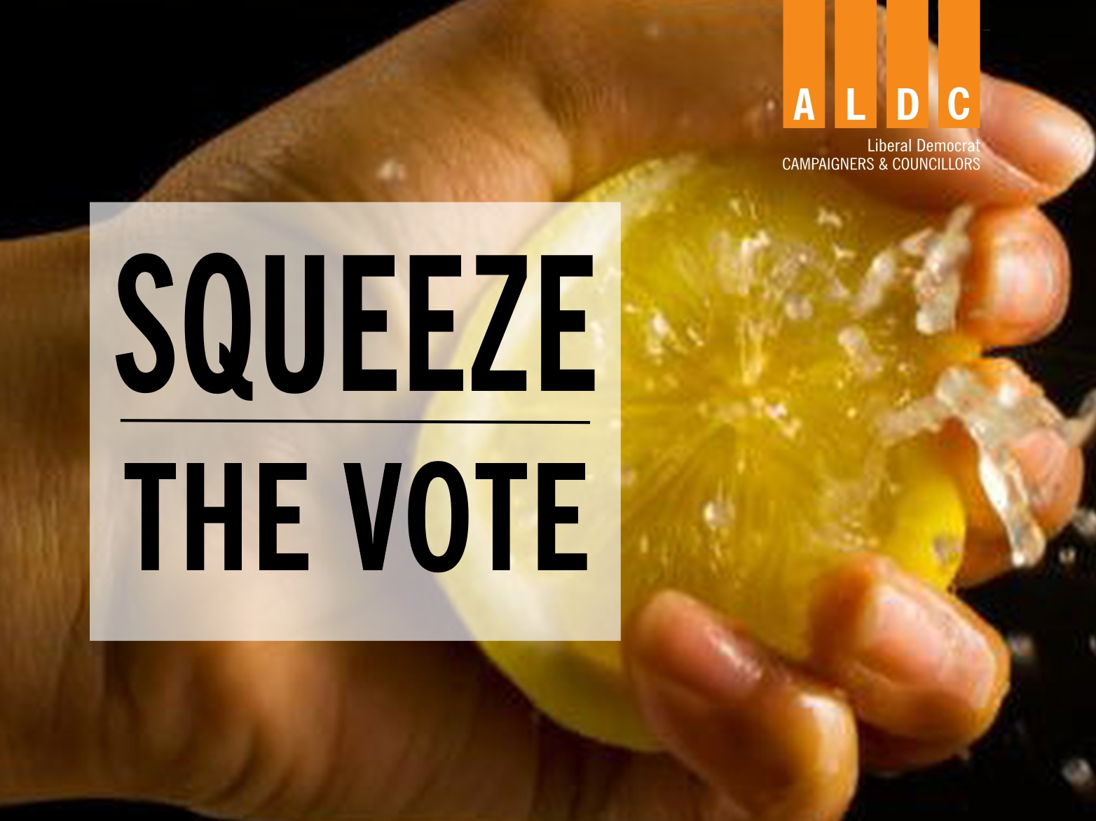 Squeeze the vote – our latest templates