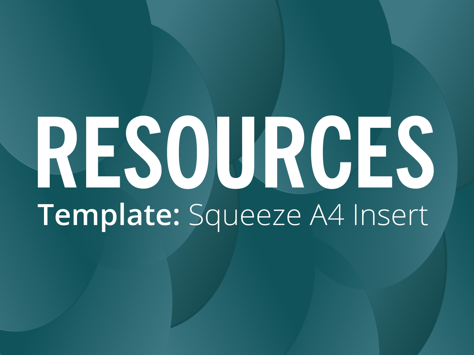 RESOURCES: Squeeze full colour A4 insert