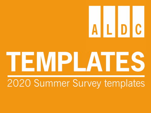 A4 Survey Template