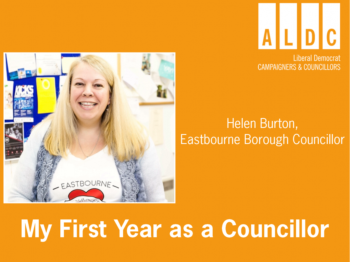 My First Year as a councillor