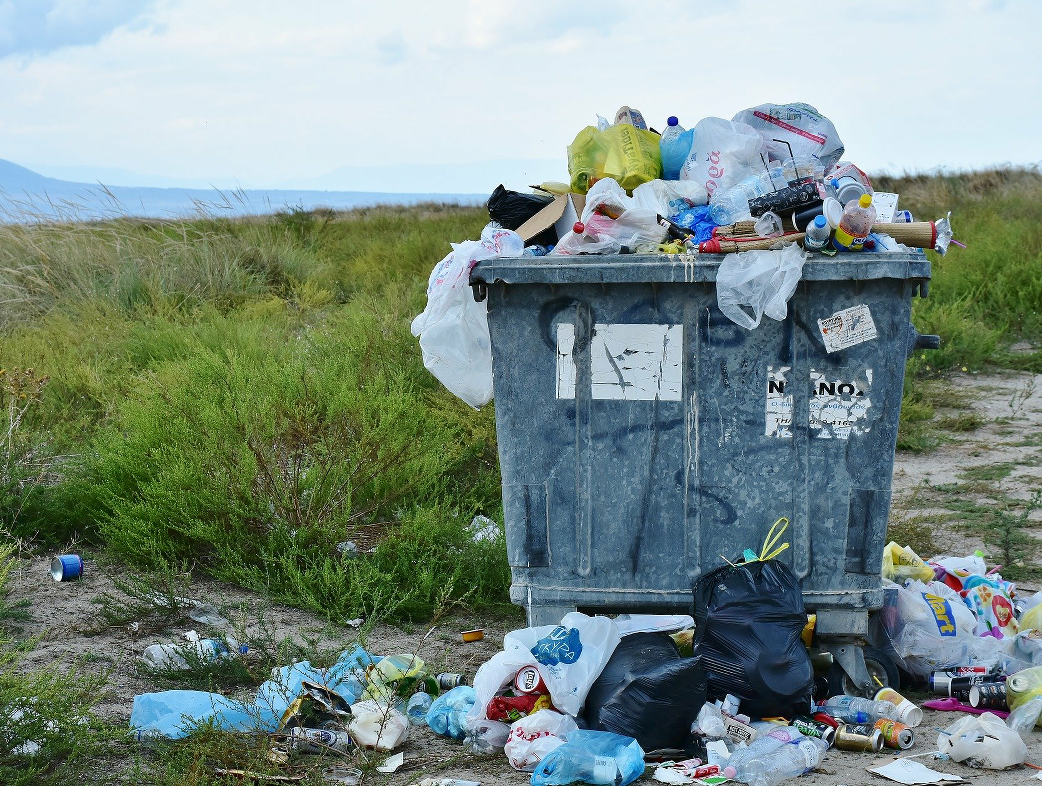 Council Motion: Let's all do our bit to tackle litter