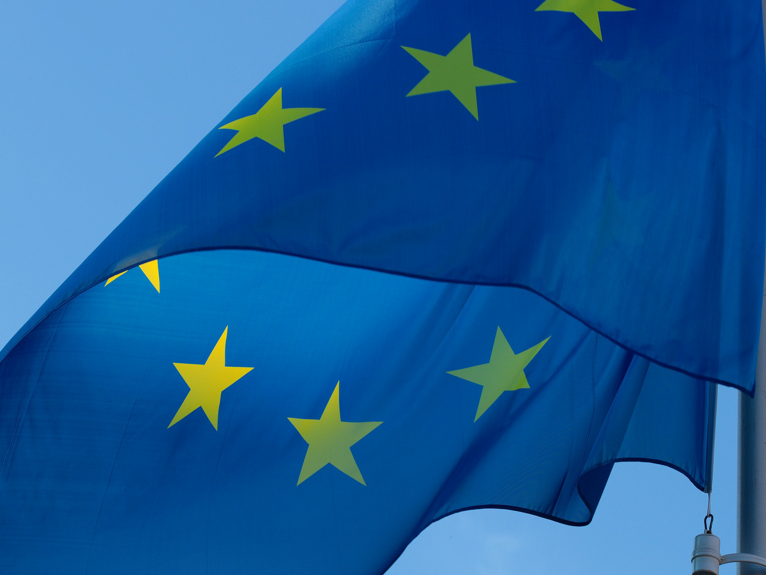 EU Citizens: Elections and their rights.